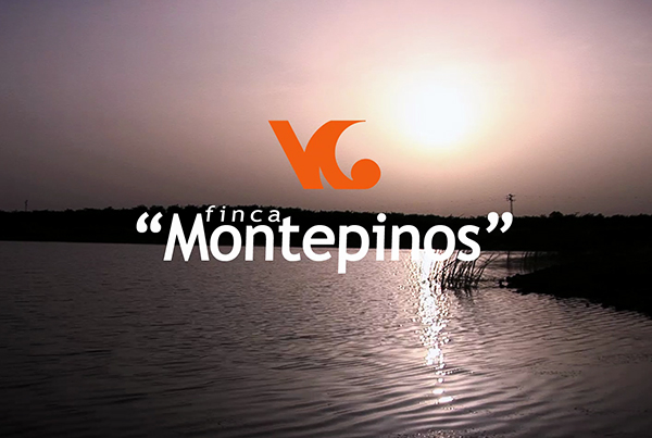HV Producciones | Grabación Vídeo Corporativo Finca Montepinos